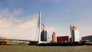 The magnificent Erasmus Bridge in modern Rotterdam